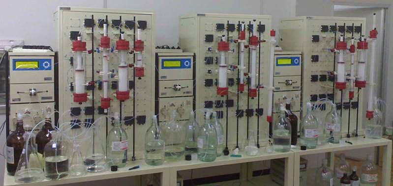 12柱大型组合层析系统