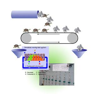 模拟移动床系统
